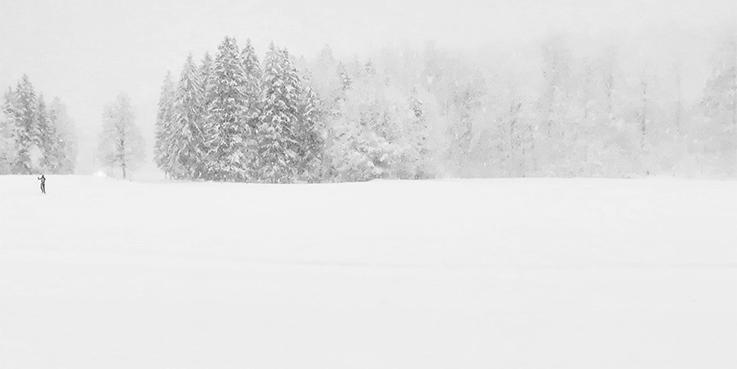 mybrainmychoice_Philine Edbauer - Schneelandschaft